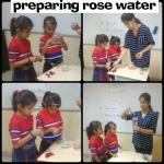 Preparing rose water