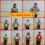 Our Animal friends : Class ll